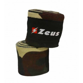 copy of ZEUS -